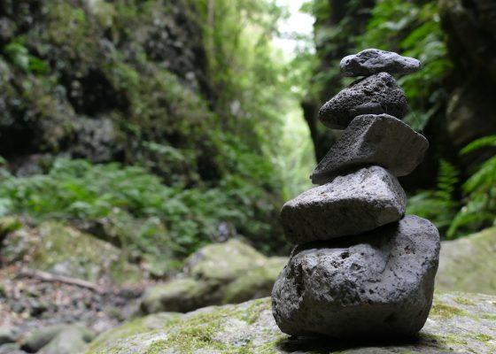 11. Yoga – Live Kurs