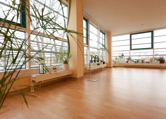 Der Blog für TCM, Ayurveda, Yoga & Wellness in Schwerin ist da